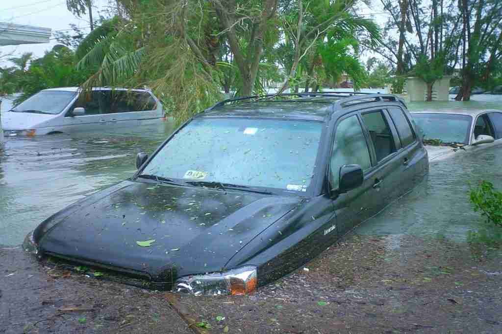 how to spot flood-damaged cars